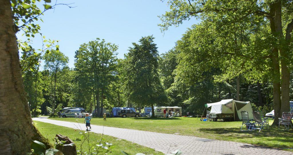 leuke kindercampings nederland - camping duinrell,leuke kindercamping zuid holland