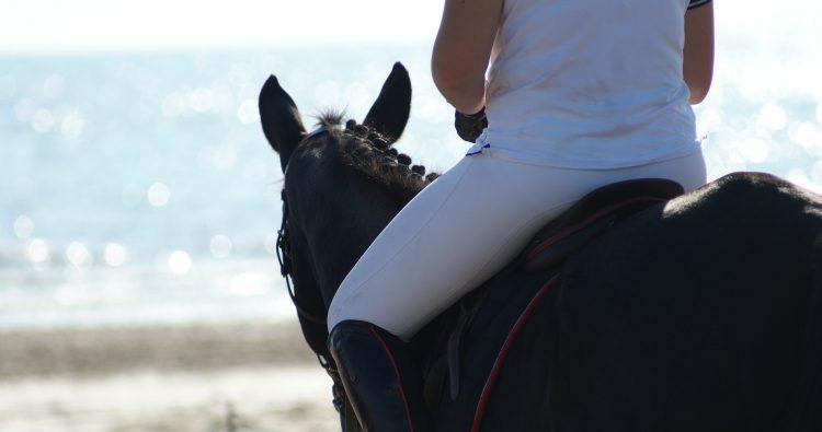 tips buitenrit,tips op het strand rijden met je paard,het strand op met je paard,paardrijden door de duinen,paardrijden door het bos,buitenrit paardrijden,paardrijden buitenrit,op buitenrit,waar op letten buitenrit,ervaringen buitenrit,buitenrit noordwijkerhout,buitenrit noordwijk,op buitenrit spannend,buitenrit maken,blog buitenrit,paardenblog buitenrit