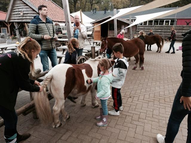 land van bartje,landal land van bartje ponys verzorgen,ponyranch land van bartje,leuk vakantiepark met kinderen,huisje huren met kinderen,gezinsvakantie nederland,paardenvakantie nederland,pony rijden nederland