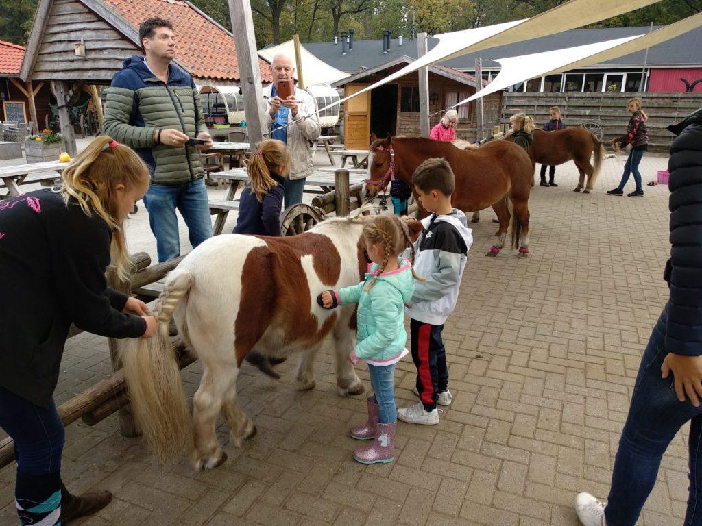 landal het land van bartje,vakantiepark pony's,vakantiepark paardenfans,leuk vakantiepark voor gezinnen en families