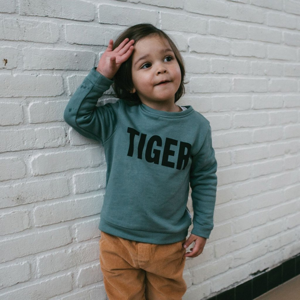 Hippe Kinderkleding.Kinderkleding Maed For Mini Tiger Sweater Jongens En Meiden