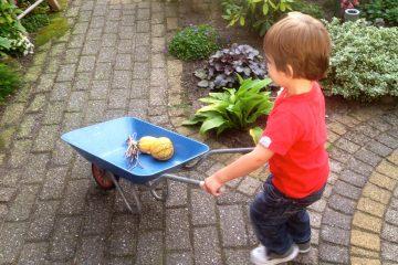 kindvriendelijke tuin - moestuin