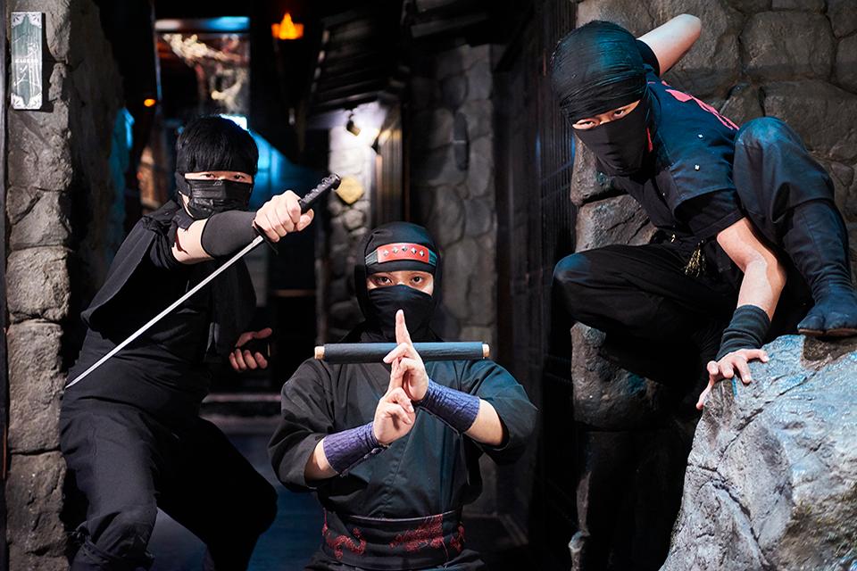 tips tokyo met kinderen,ninja akasaka,ninja restaurant,