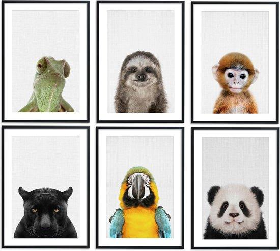 jungle kamer,jungle posters,jungle schilderijen,dieren posters,jungle babykamer,leguaan,luiaard,aapje,janguar,papegaai,panda,safari kamer