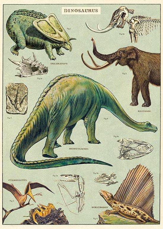 dinosaurus kamer,dino kamer,kamer in dino thema,dinosaurus accessoires,dino accessoires,dinosaurus slaapkamer,jongens kamer dinosaurus,schoolplaat dinosaurus,dinosaurus poster