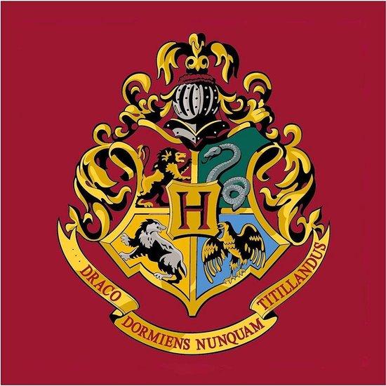 vloerkleed hogwarts,harry potter vloerkleed