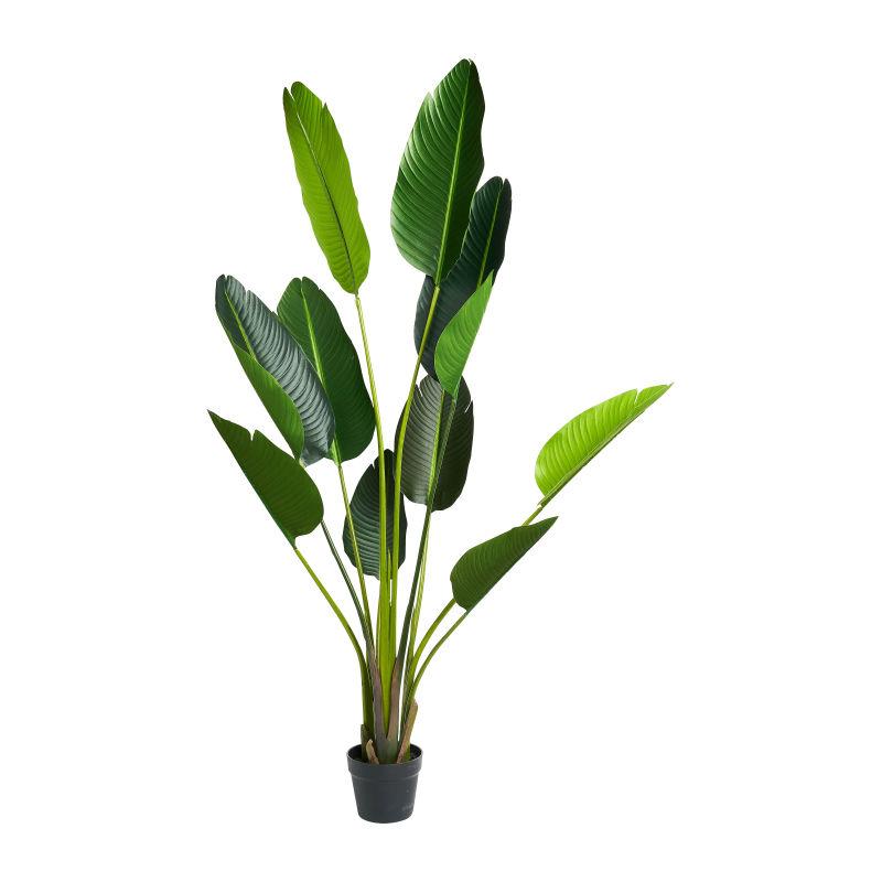 monstera kunstplant,tropische plant,tropische kunstplant,kunstplant ikea,safari kamer,jungle slaapkamer,leuke kunstplant,mooie kunstplant,jungle kinderkamer,jungle babykamer
